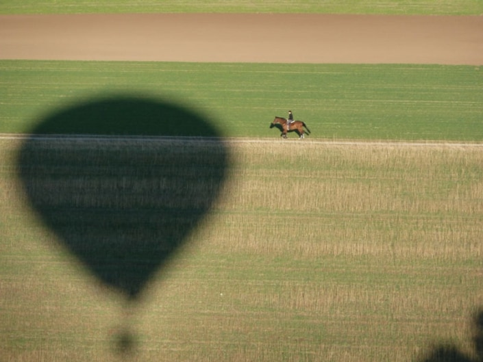 Ballonschatten auf einem Feld mit daneben laufenden Pferd