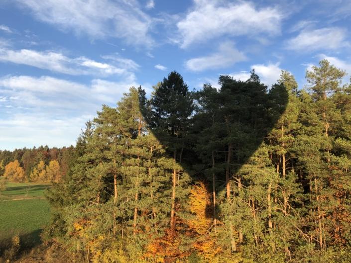 Herbstliches Schattenspiel im Oktober